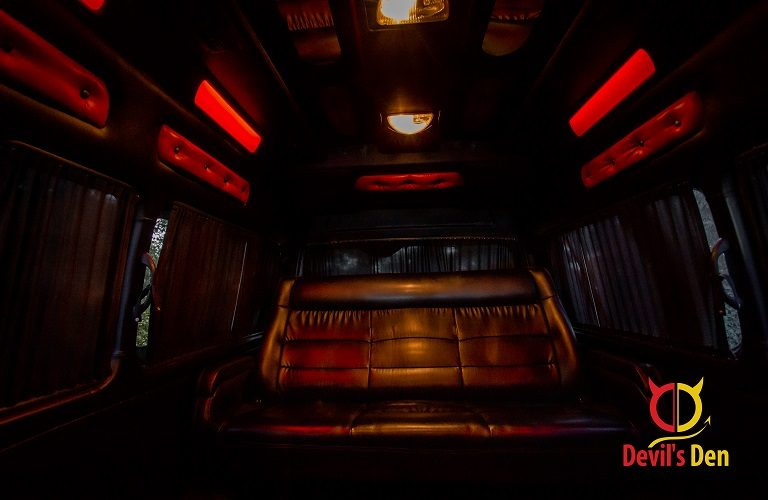 VIP Bus Back seat